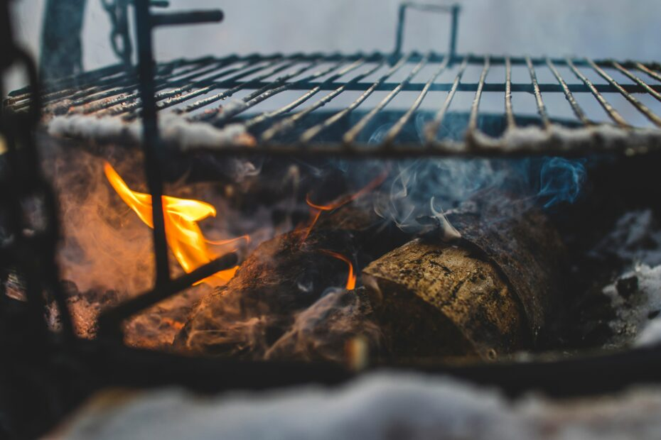 meat cooking on fire grill